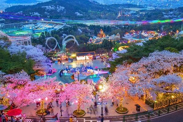 Destinasi Dengan Pemandangan Alam Di Daegu